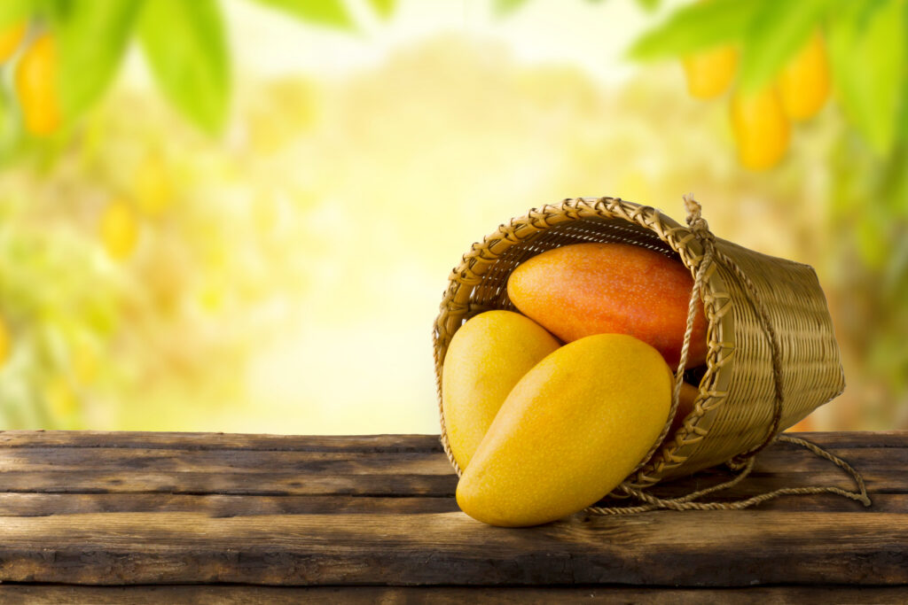 Why Is Mango The King Of Fruit