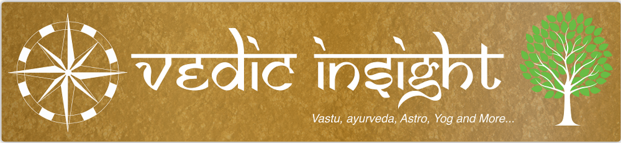 Logo of vedic insight